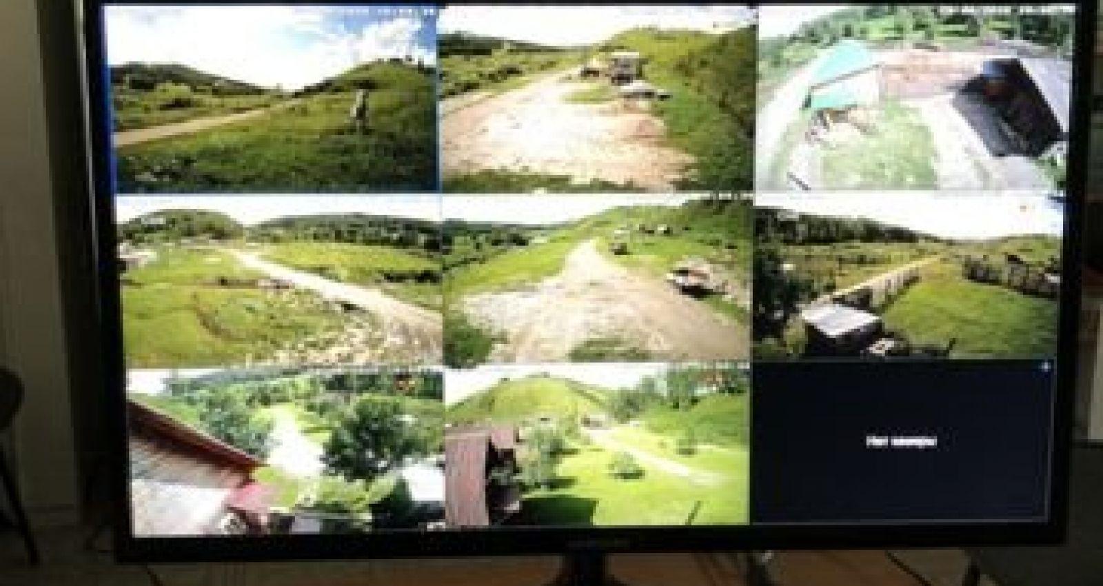 Мараловодческую ферму выставили на продажу в Алтайском крае